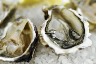 Oysters_Half_Shell