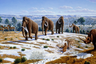 Ice_age_fauna_northern_Spain_-_Mauricio_Antón