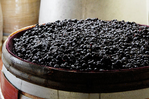 Winespeak 101: Carbonic Maceration