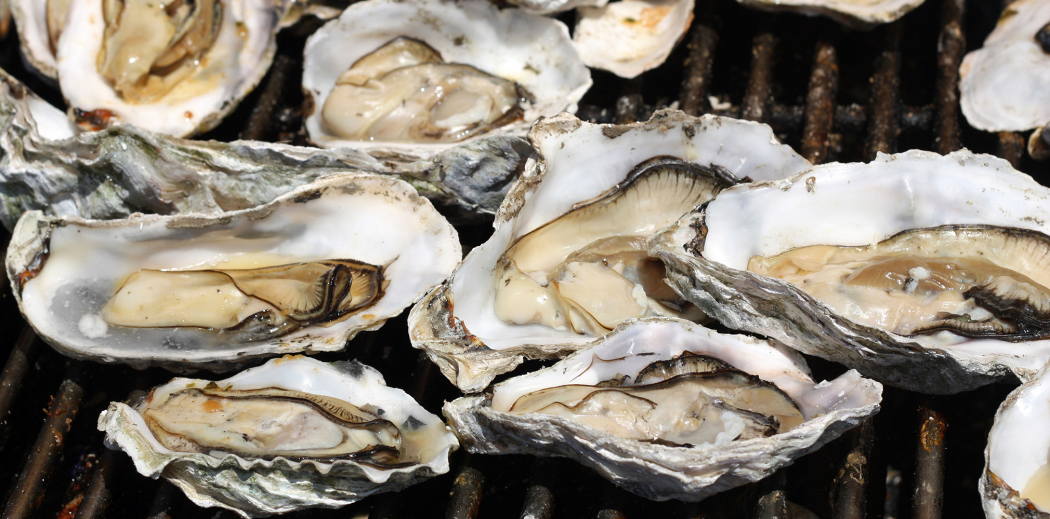 2020x1000-Oysters