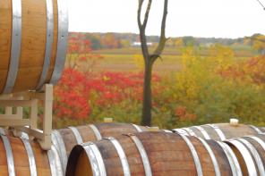 Winemaking in the Finger Lakes