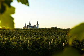 winecitychina